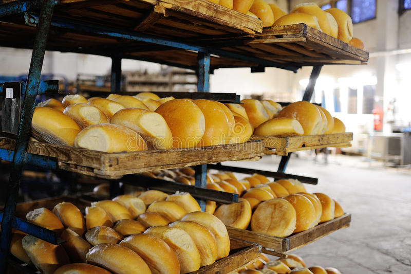 Fresh bread on a shelf in a bakery stock image