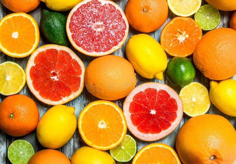 Fresh bright citrus royalty free stock image