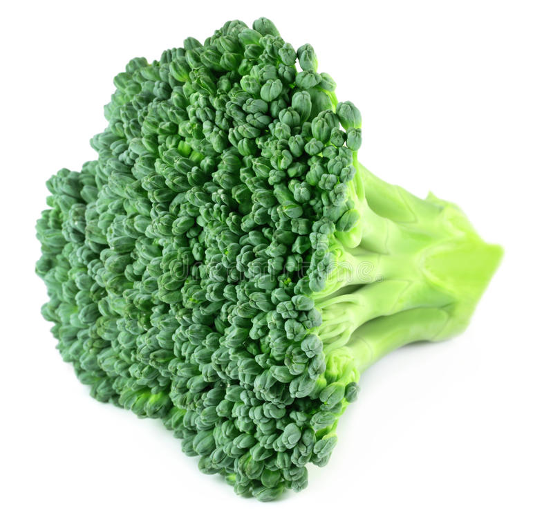 Download Fresh Broccoli stock image. Image of bunch, crop, nature - 28587889