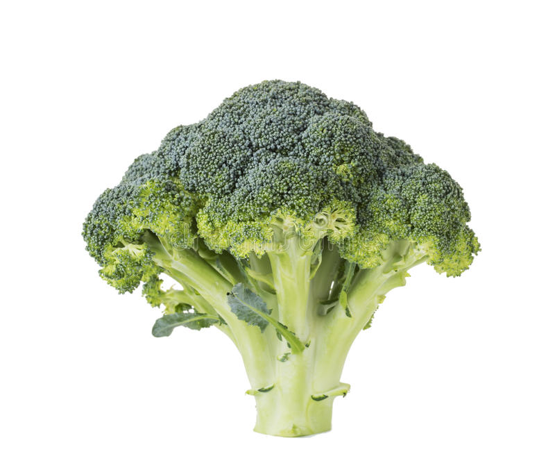 Fresh broccoli crowns royalty free stock images