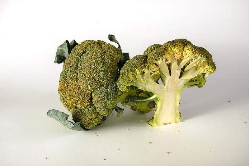 Fresh broccoli with leaves. Shaped tree stock images