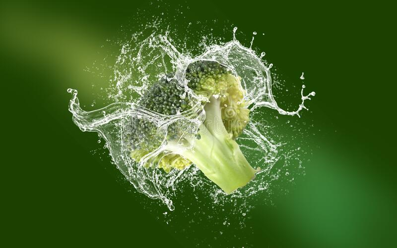 Fresh Broccoli royalty free stock images