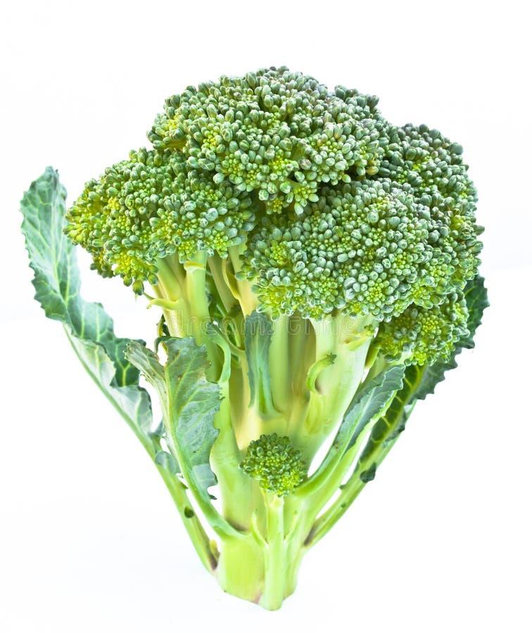 Download Broccoli stock photo. Image of broccoli, plant, tasty - 29992854