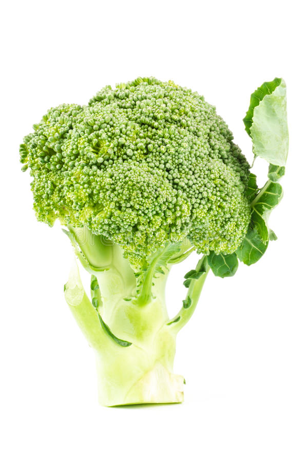Download Fresh broccoli stock photo. Image of object, nutrition - 43078684