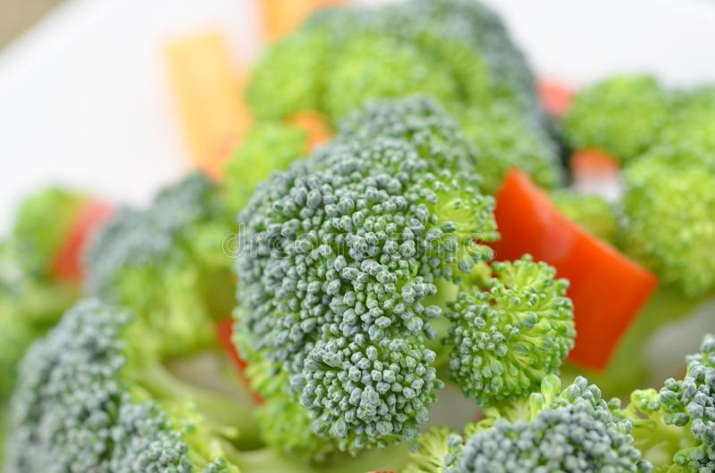 Fresh broccoli in white plate royalty free stock image