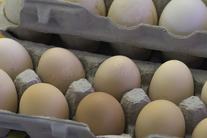 Fresh brown chicken eggs in grey pressed paper cartons stock photo
