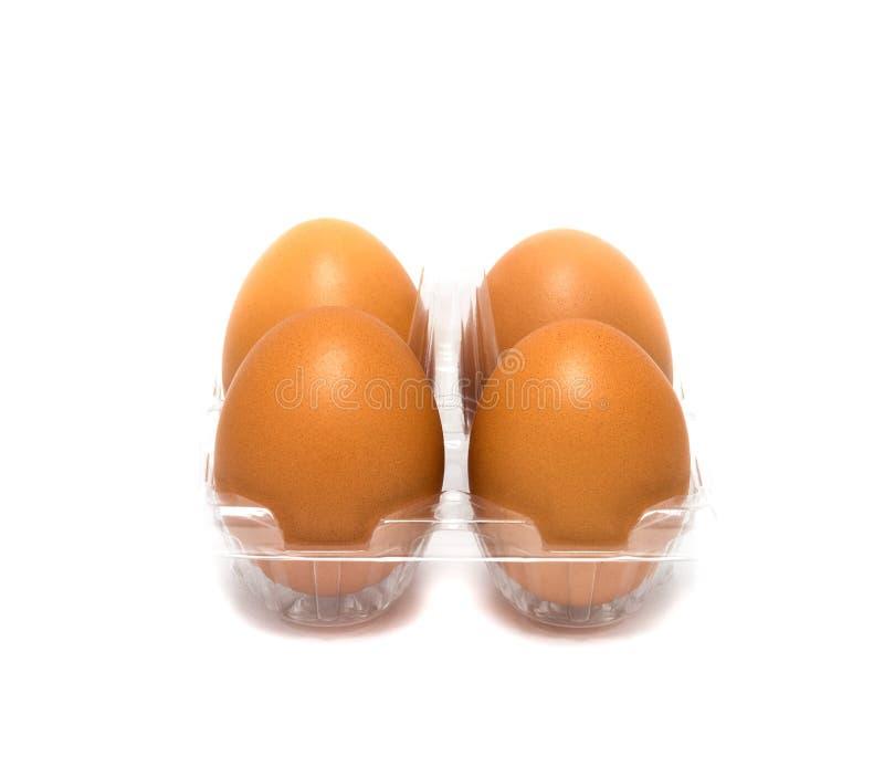 Fresh brown eggs in plastic carton on white background. stock photos