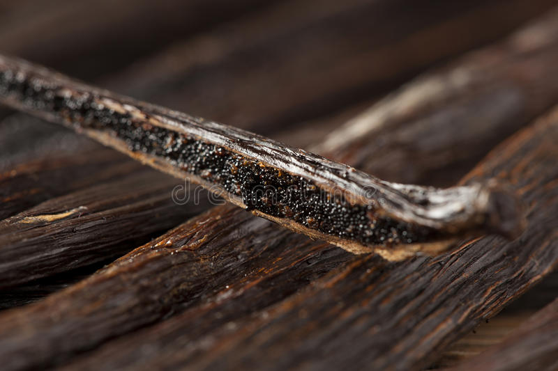 Fresh Brown Organic Vanilla Bean royalty free stock photos