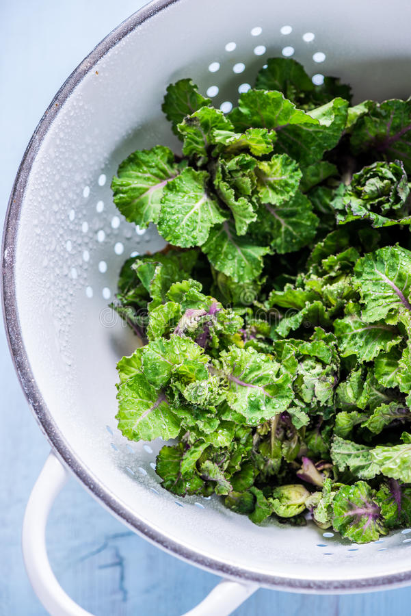 Fresh brussel and kale sprouts flower royalty free stock images