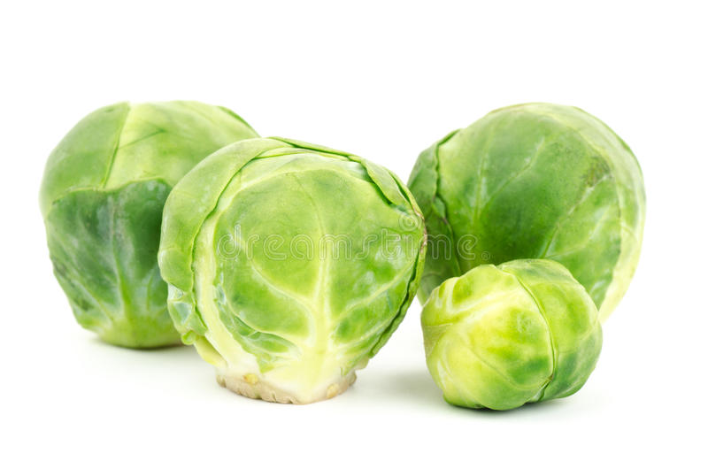 Fresh brussels sprout. On white background royalty free stock photos