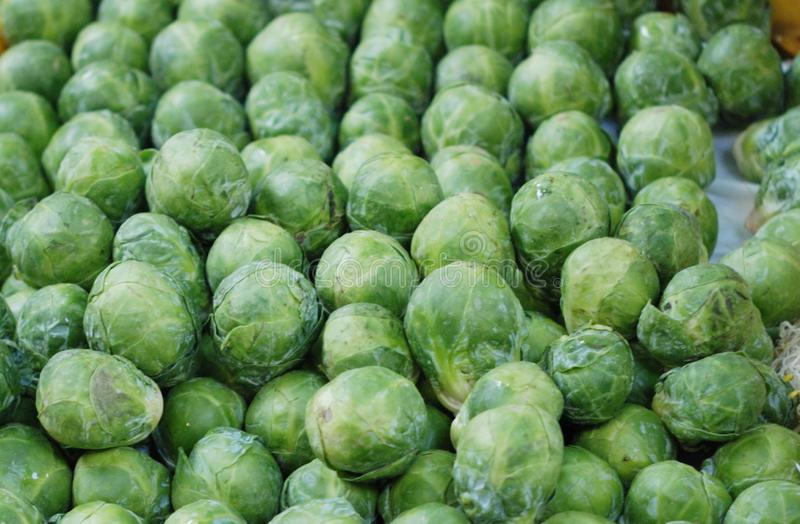 Fresh Brussels sprouts full frame stock images