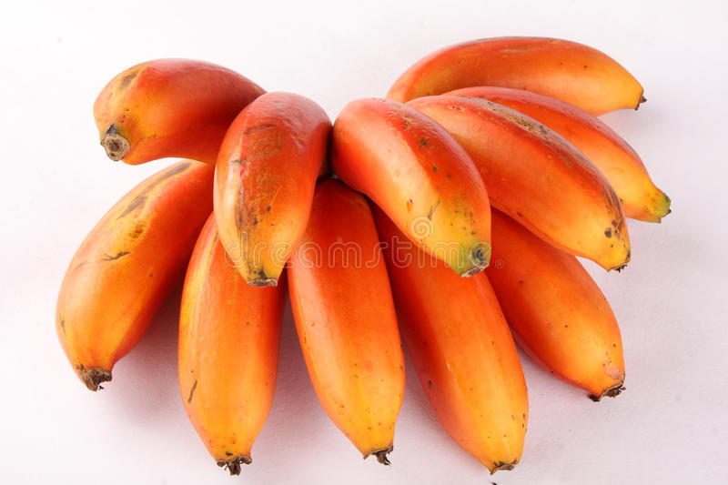 Fresh Bunch of Tropical fresh Red bananas, stock photography