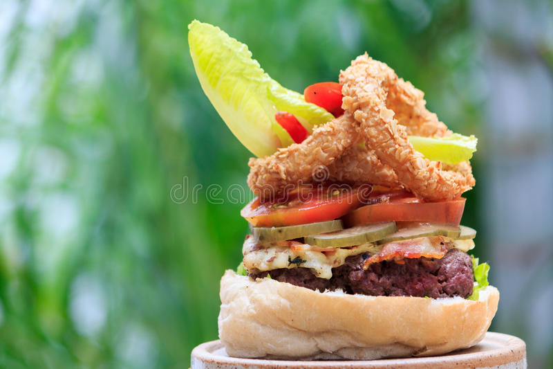 Fresh Burger and Onion Rings royalty free stock photos