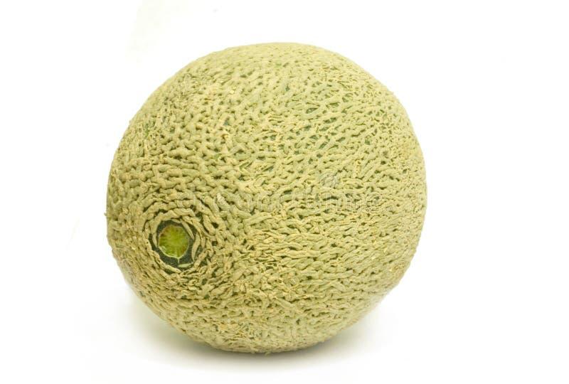 Fresh cantaloupe melon royalty free stock image