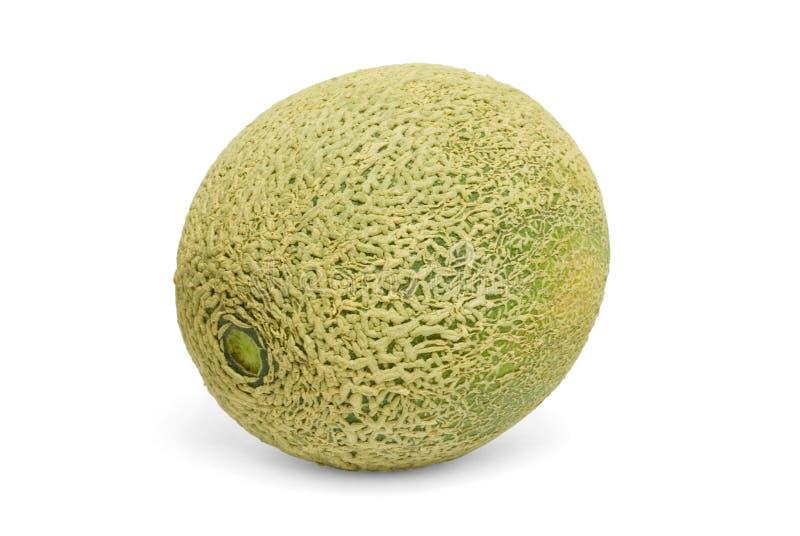 Fresh cantaloupe melon royalty free stock photography