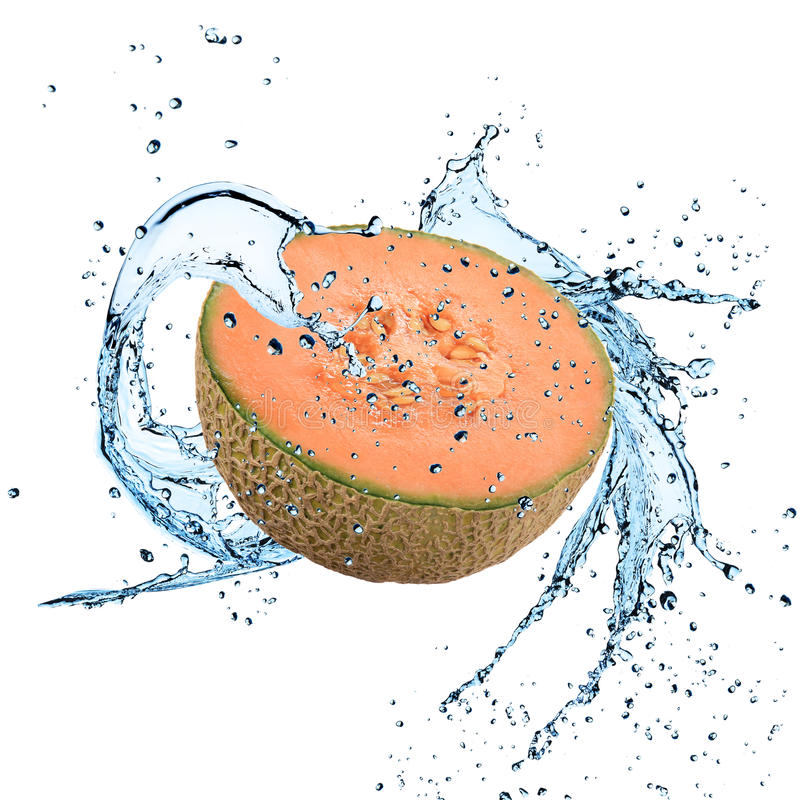 Fresh cantaloupe melon with water splash. Over whit royalty free stock image