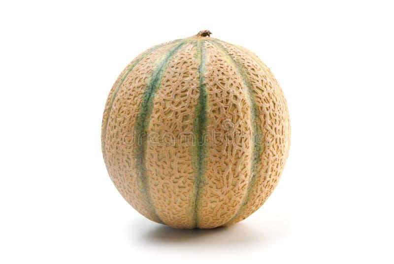 Fresh cantaloupe over white. Fresh round cantaloupe over white background royalty free stock images