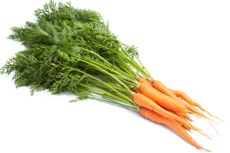 Download Fresh carrot stock photo. Image of colorful, green, colourful - 14847574