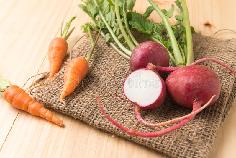 Fresh carrot and red radish on sack stock photography