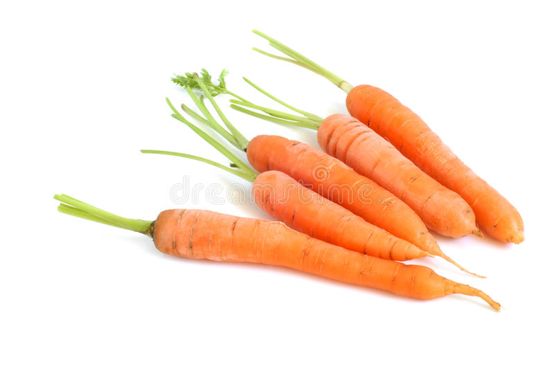Fresh carrots. On a white background stock image