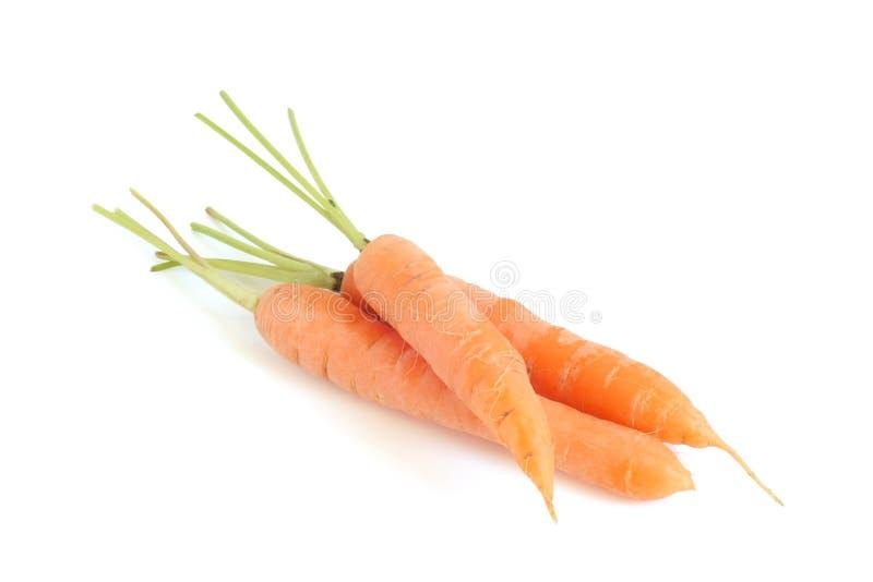 Fresh carrots. On white background stock image