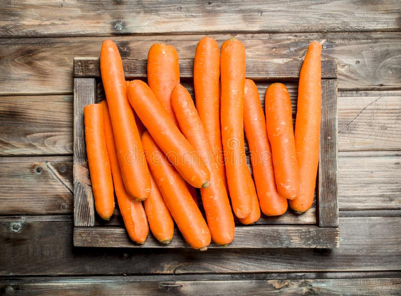 Fresh carrots on a wooden tray. On wooden background royalty free stock photography