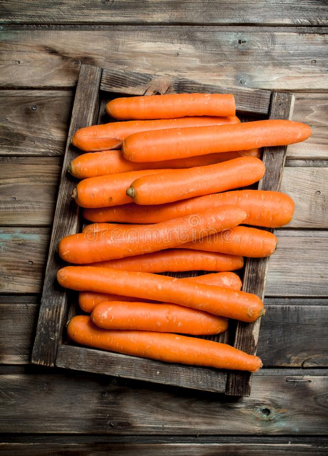 Fresh carrots on a wooden tray. On wooden background stock photo