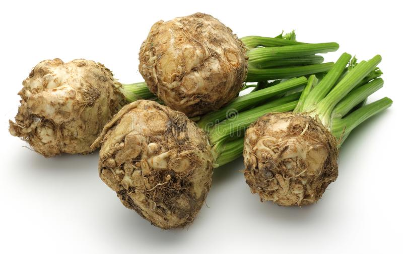 Fresh celeriac root with celery stalks isolated. Background stock photography