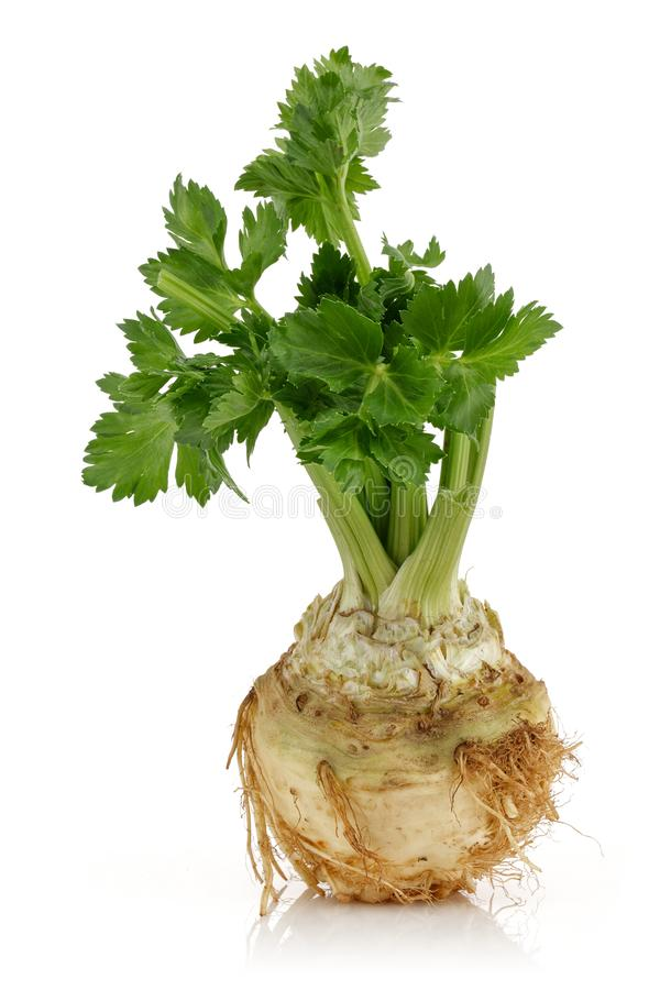 Fresh celeriac root with celery stalks isolated. Background stock images