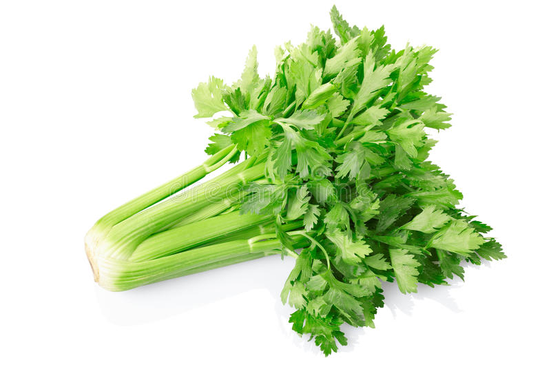 Fresh celery. Isolated on white, clipping path included stock photos