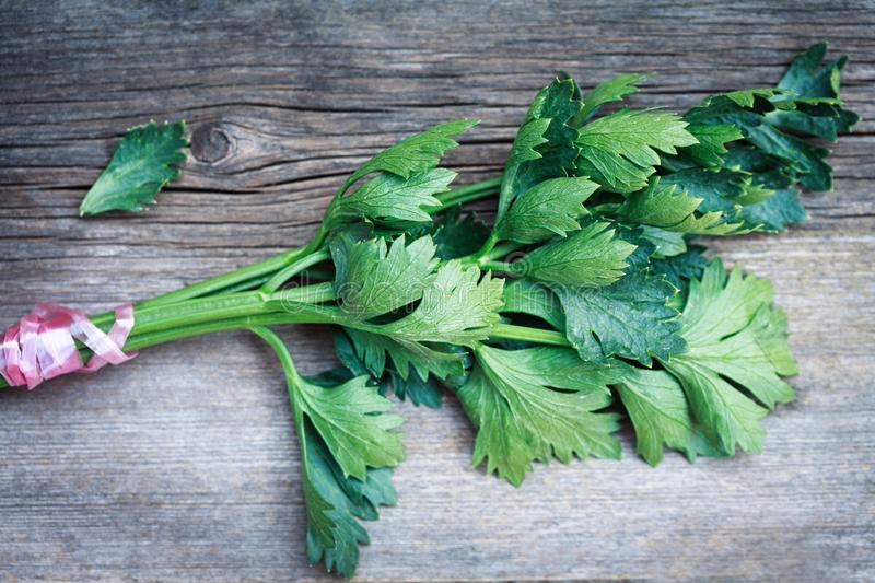 Fresh celery on a wooden table royalty free stock image