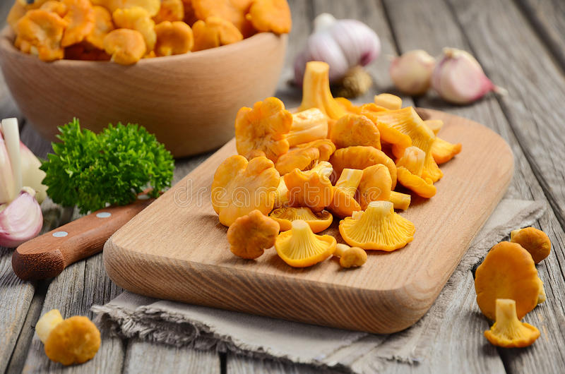 Fresh Chanterelle mushrooms with herbs and spices on rustic wooden background royalty free stock photography