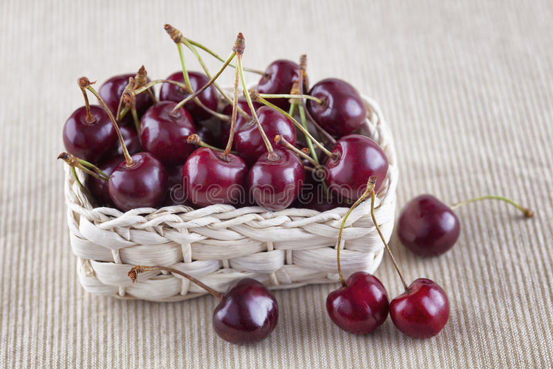 Fresh cherries in a basket. Fresh organic cherries in a basket stock photography
