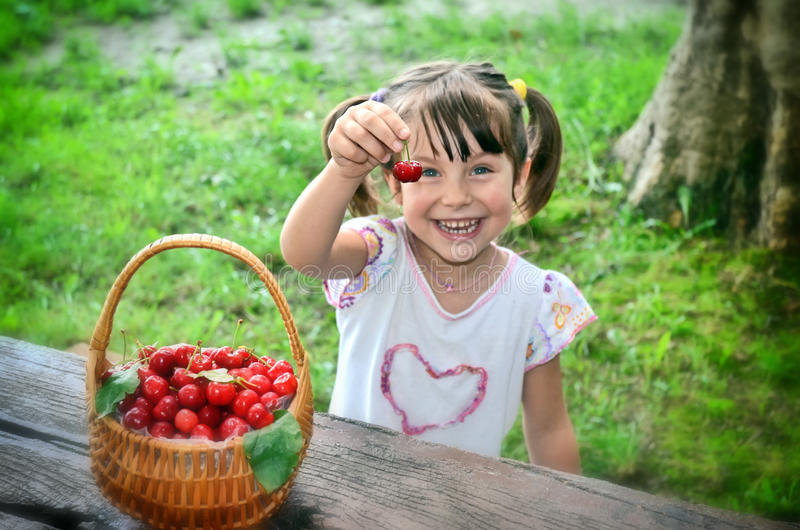 Fresh Cherries royalty free stock photography