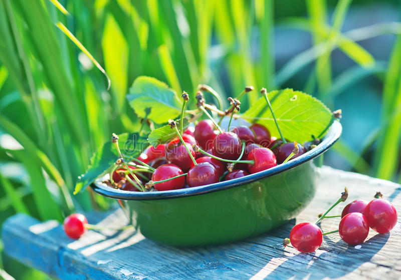 Fresh cherry. In bowl and on a table royalty free stock image