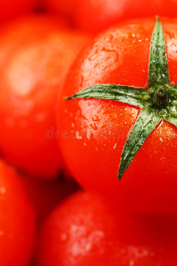 Fresh cherry tomatoes with closeup. Background red tomatoes. A group of juicy ripe fruits. red tomatoes background. Wallpaper toma. To macro royalty free stock photo
