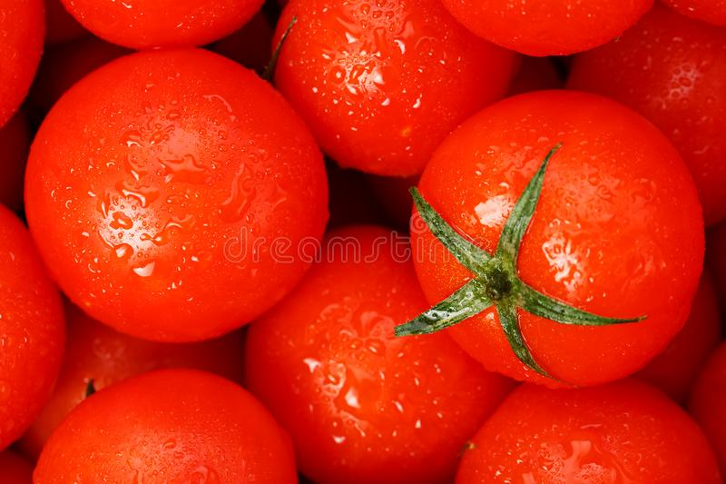 Fresh cherry tomatoes with closeup. Background red tomatoes. A group of juicy ripe fruits. red tomatoes background. Wallpaper toma. To macro stock photos