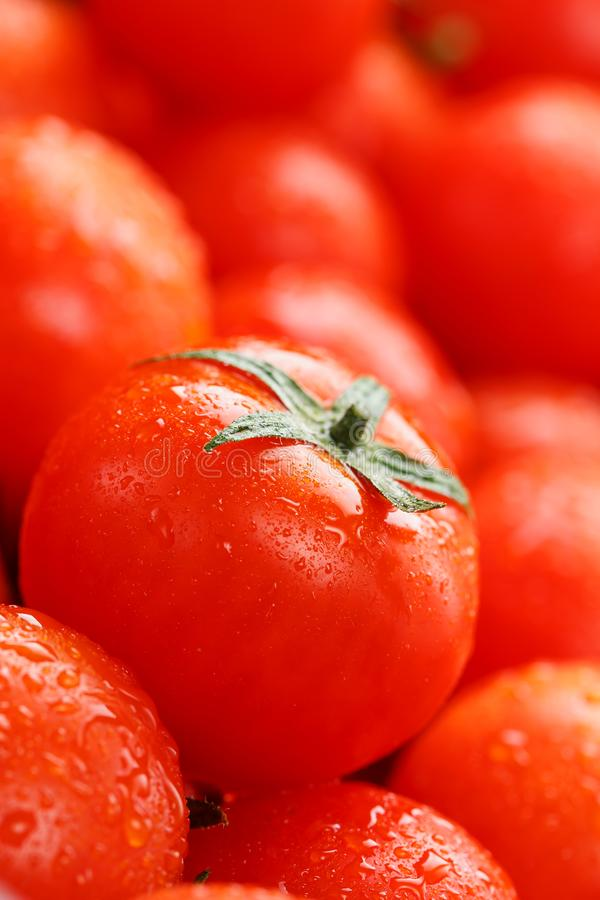 Fresh cherry tomatoes with closeup. Background red tomatoes. A group of juicy ripe fruits. red tomatoes background. Wallpaper toma. To macro stock images