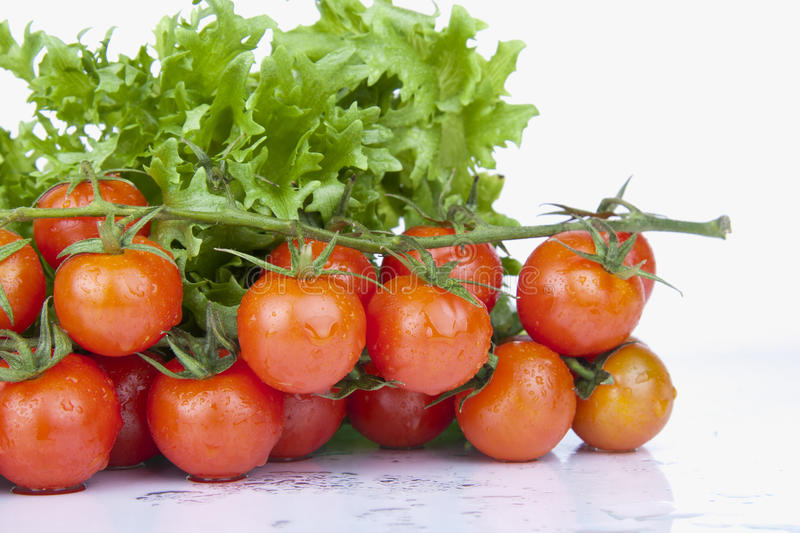 Fresh Cherry Tomatoes and green Salad royalty free stock images