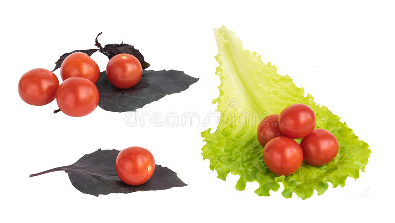 Fresh cherry tomatoes isolated stock photos