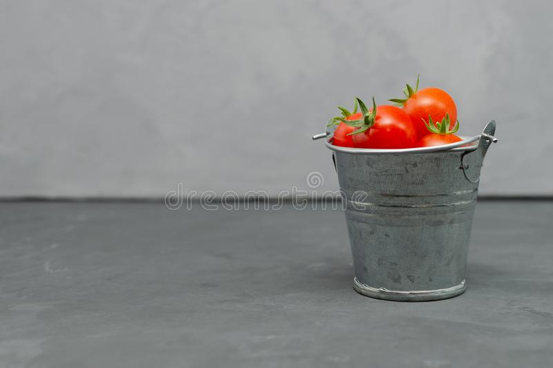 Fresh Cherry tomatoes in a toy mini decorative tin bucket on a dark background. Beautiful Life still. Fresh Cherry tomatoes in a toy mini decorative tin bucket stock image