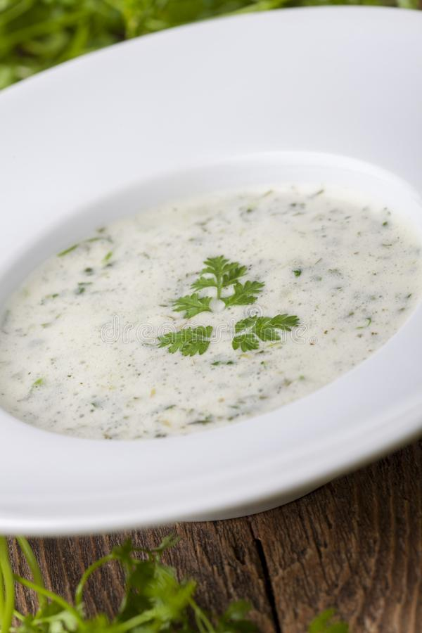 Fresh chervil soup stock images
