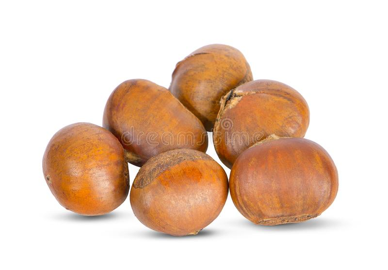 Fresh chestnuts an isolated on white background.  royalty free stock photography