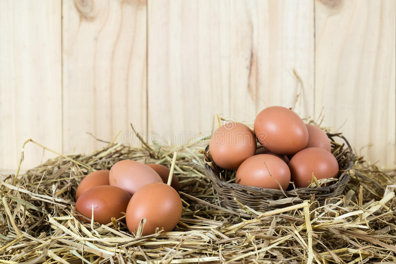 Fresh chicken eggs in the straw nest on wooden vintage background royalty free stock photo