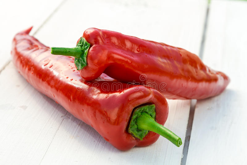 Fresh chili pepper royalty free stock image