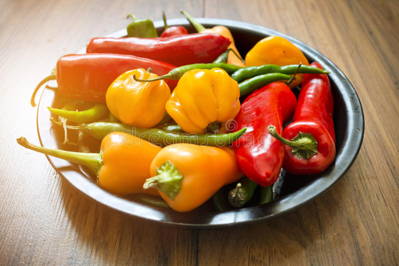 Fresh Chilli Pepper Selection royalty free stock photos