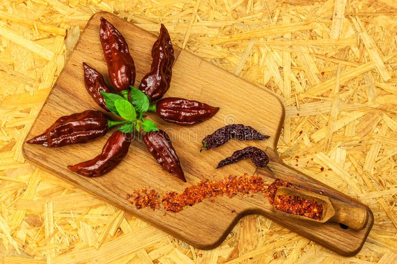 Fresh chilli peppers. Preparation of spicy food. Healthy spices. Extra hot chili pepper  Capsicum Chinenses  Bhut Jolokia royalty free stock photos