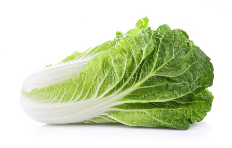 Fresh chinese cabbage on a white background royalty free stock photography