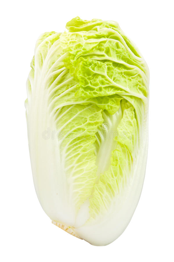 Fresh chinese cabbage. On a white background stock images