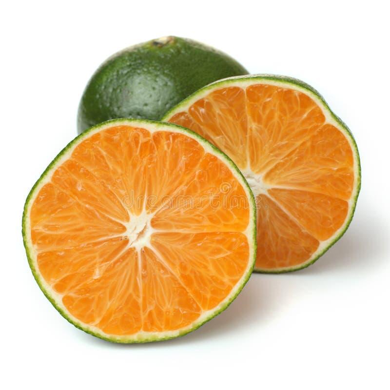 Fresh chinese oranges stock photography